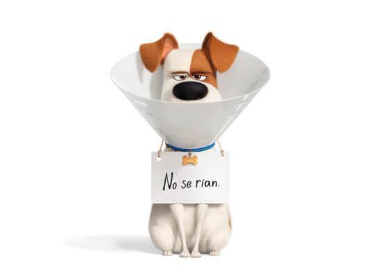 """""""La vida secreta de tus mascotas 2"""": Amores perros sin buen guion"""